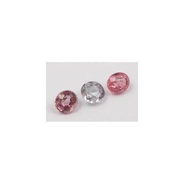 LOT SPINEL